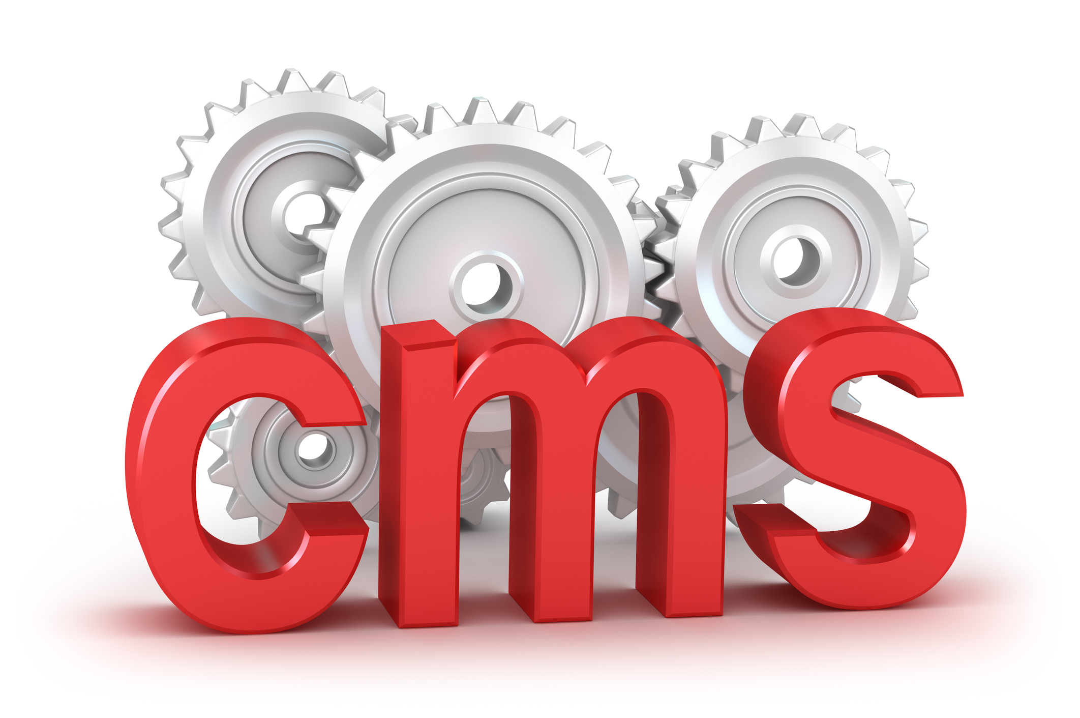 Cms church management system